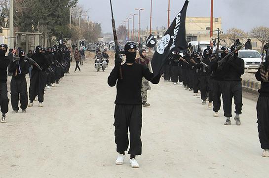 Пентагон поддержал участие Турции воперациях противИГ