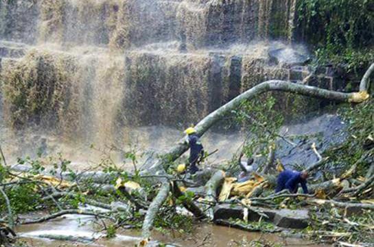 Գանայում 17 մարդ է զոհվել ջրվեժի մոտ ծառի ընկնելու հետևանքով