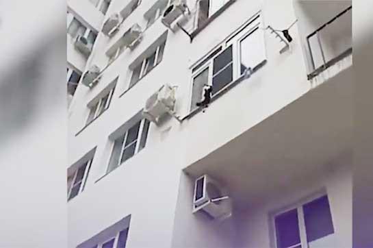 Սոչիում պատահական անցորդը փրկել է կատվին (Տեսանյութ)