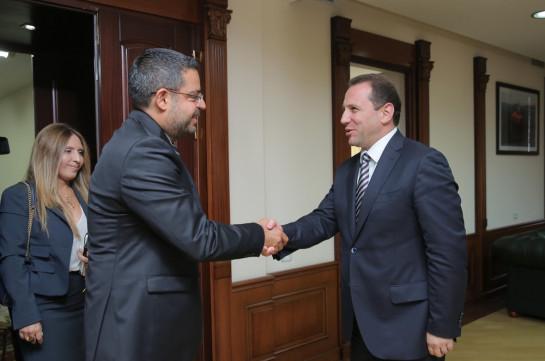 Հայաստանը կշարունակի բարեկամ սիրիացի ժողովրդին օգնության փուլային տրամադրման գործընթացը. Դավիթ Տոնոյան