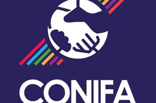 ConiFA проведет в Арцахе чемпионат Европы. О чем загоревали самые мультикультурные толеранты
