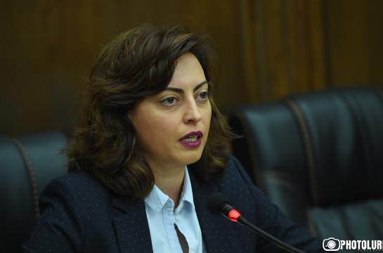 Наш кандидат в Совет старейшин Еревана не имеет никакой связи с Микаелом Минасяном, он просто однофамилец – Лена Назарян