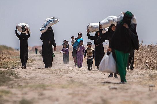 Մեկ օրում Սիրիա է վերադարձել ավելի քան 800 փախստական