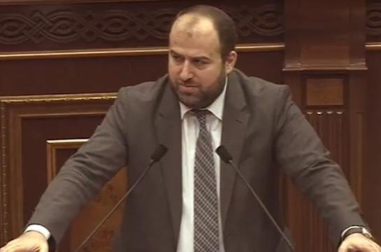 Парламент принял во втором чтении законопроект о криминализации незаконной вырубки леса