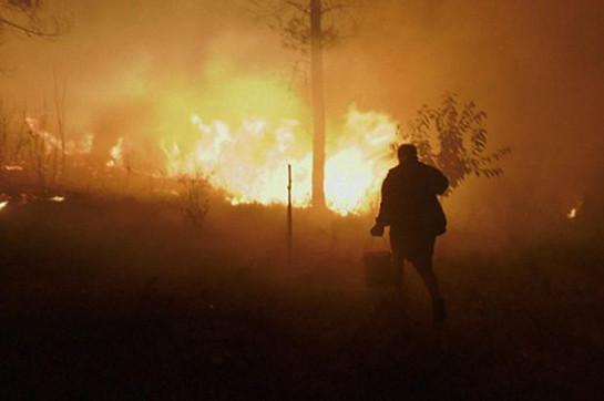 В Португалии практически 40 человек пострадали из-за природных пожаров
