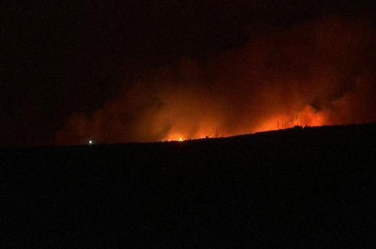 В окрестностях Афин произошел сильный лесной пожар