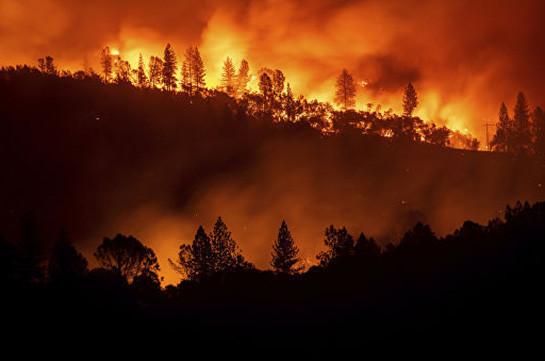 Сильный лесной пожар возник на греческом острове Эвбея