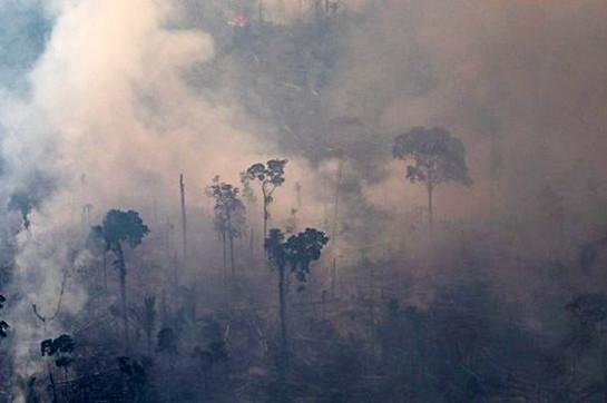 Amazon fires: Brazil en route for deny G7 agreement of $22m abet