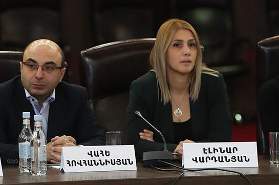 ԱԺ խմբակցությունները նպաստեցին Սահմանադրության դրույթների պահպանմանը. Էլինար Վարդանյան