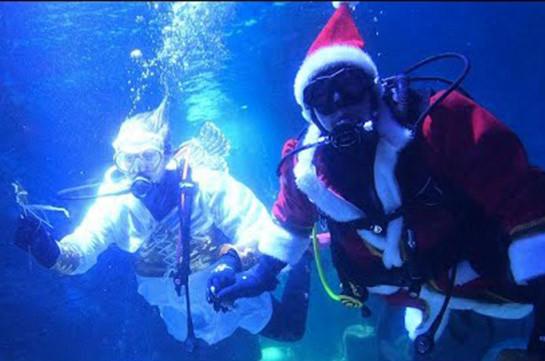 Морской Санта-Клаус и подводный ангел (Видео)