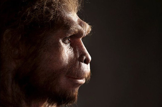 Homo erectus: Ancient humans survived longer than we thought