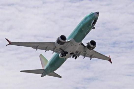 Спикер Рады поручил подготовить заявление по крушению Boeing в Иране