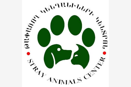 «Թափառող կենդանիների վնասազերծման կենտրոն»-ը ձեռնարկում է օպերատիվ միջոցառումներ` հայտնաբերելու խնդրահարույց շներին