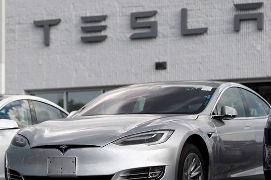Tesla разрешили вырубить лес под стройку первого в ЕС завода