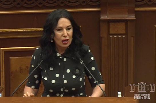 Не смейте возлагать всю ответственность на гражданина – Наира Зограбян о введении спецназа и дубинках