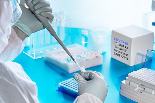 В Армении число зараженных коронавирусом достигло 29 820, число смертей - 685