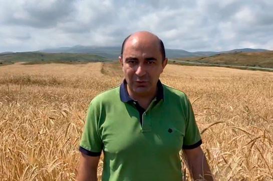 Фермер остался один на один со своими долгами и кредитами в банках – Эдмон Марукян