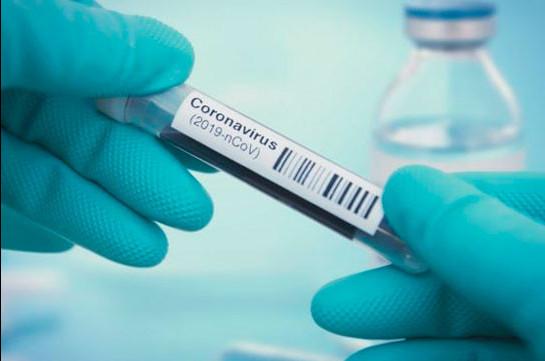 В Армении число зараженных коронавирусом увеличилось на 259 человек, скончались 5 человек