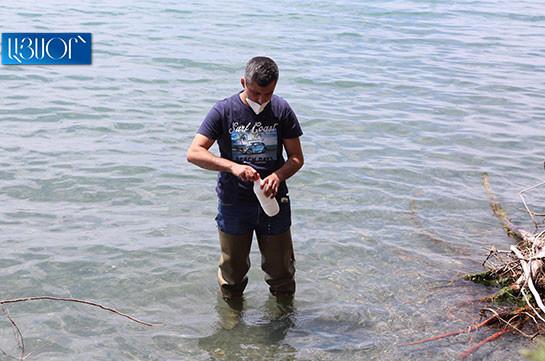 Ваагн Варагян: Мы можем дойти до точки невозврата, в результате чего потеряем наше национальное богатство – озеро Севан