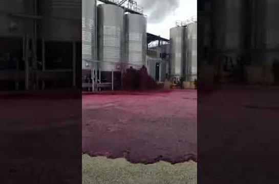 Իսպանիայում գործարանի տարածքը ողողվել է գինով (Տեսանյութ)