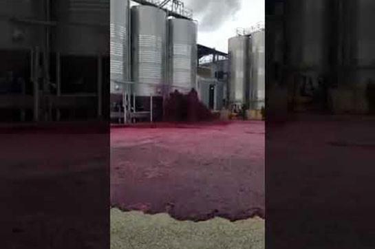 В Испании территорию завода затопило вином (Видео)