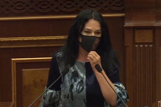 Меня не удовлетворяют мягкие дипломатические формулировки международных структур – Наира Зограбян