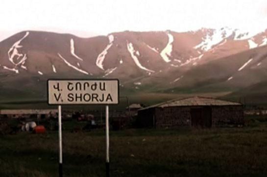 Азербайджанские военные украли корову и новорожденного теленка из села Верин Шоржа, открыли огонь в направлении крупного рогатого скота – омбудсмен Армении