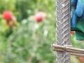 «Կգնանք մինչև վերջ». Չինարիում գունավորում են մարդկանց տներն ու կյանքը